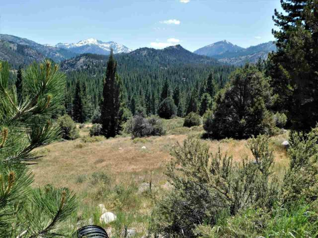 Lot 6 Raymond View Road, Markleeville, Ca, CA 96120 (MLS #190002520) :: Harcourts NV1