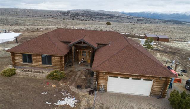 445 Desert Sun Lane, Reno, NV 89508 (MLS #190002757) :: Theresa Nelson Real Estate