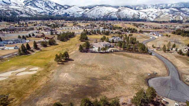 10 Lake Meadow Lane, Washoe Valley, NV 89704 (MLS #190002883) :: Joshua Fink Group