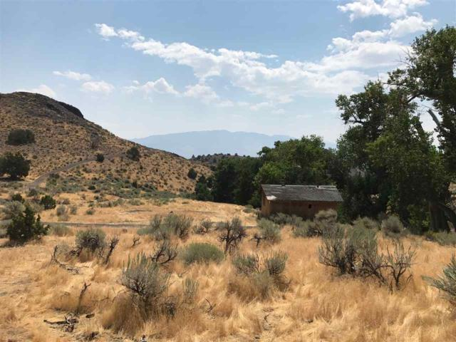 APN00428194 Six Mile Canyon, Virginia City, NV 89440 (MLS #190002988) :: Theresa Nelson Real Estate