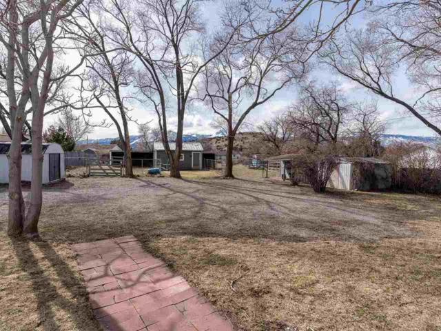 15605 Toll Road, Reno, NV 89521 (MLS #190002992) :: Joshua Fink Group
