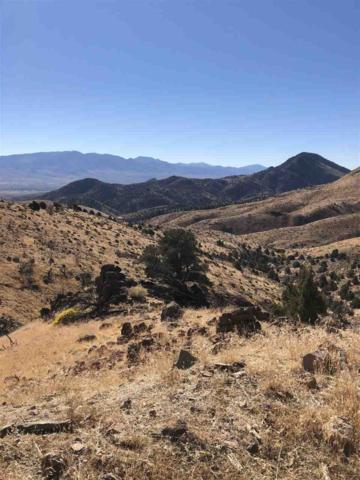 River View Road, Virginia City, NV 89440 (MLS #190003030) :: Theresa Nelson Real Estate