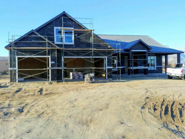1359 Downs, Minden, NV 89423 (MLS #190003238) :: NVGemme Real Estate