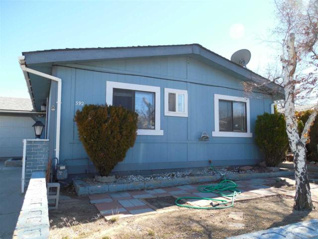 392 Traci Ln., Moundhouse, NV 89706 (MLS #190003246) :: Harcourts NV1