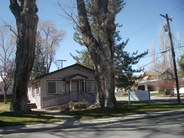 402 S Minnesota, Carson City, NV 89703 (MLS #190003288) :: Ferrari-Lund Real Estate