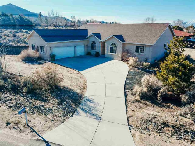 2051 Damon Rd, Carson City, NV 89701 (MLS #190003289) :: Joshua Fink Group