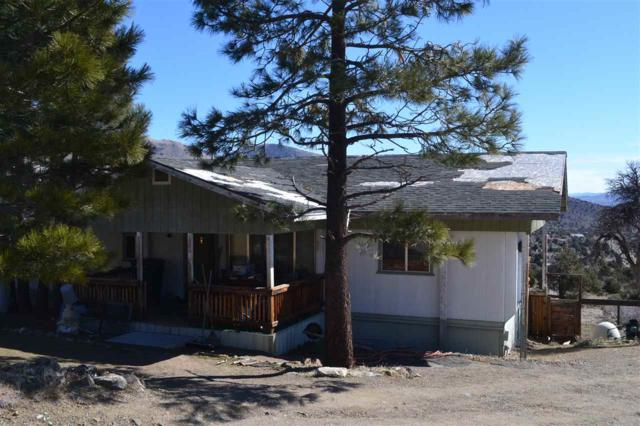 1255 Slate Rd, Wellington, NV 89444 (MLS #190003314) :: Harcourts NV1
