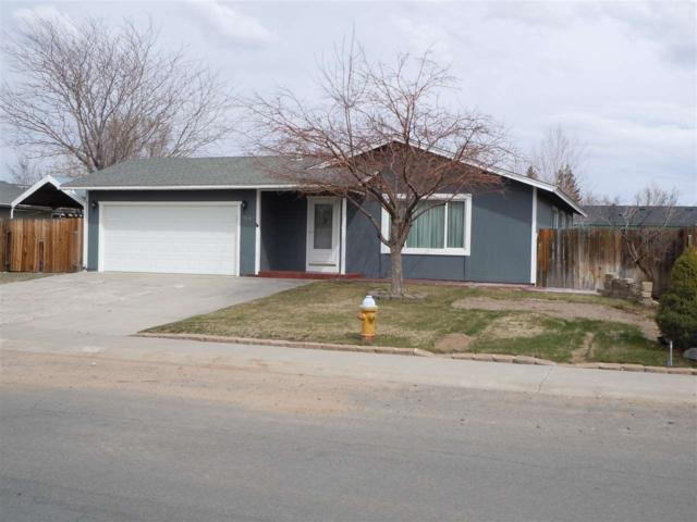 744 Hornet Dr, Gardnerville, NV 89460 (MLS #190003389) :: NVGemme Real Estate