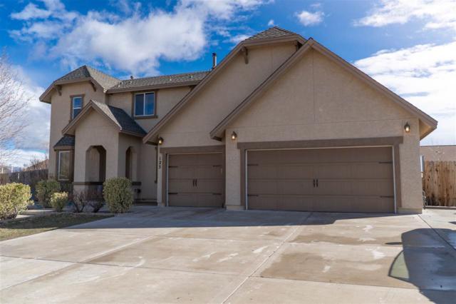 125 Chalice Avenue, Dayton, NV 89403 (MLS #190003502) :: NVGemme Real Estate