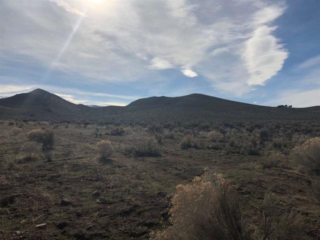 Wild Horse Rd, Reno, NV 89510 (MLS #190003521) :: Harcourts NV1