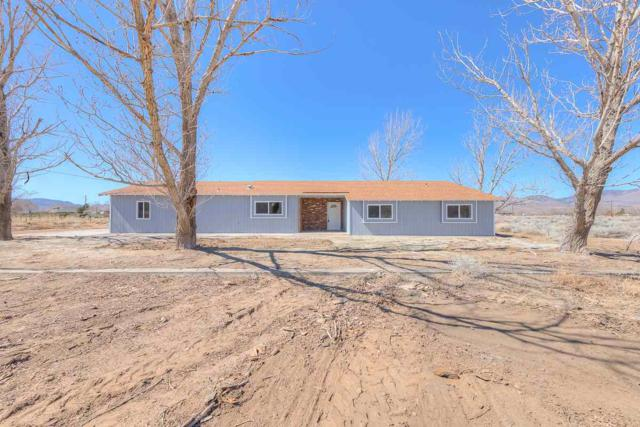 120 Potosi Rd, Dayton, NV 89403 (MLS #190003530) :: NVGemme Real Estate