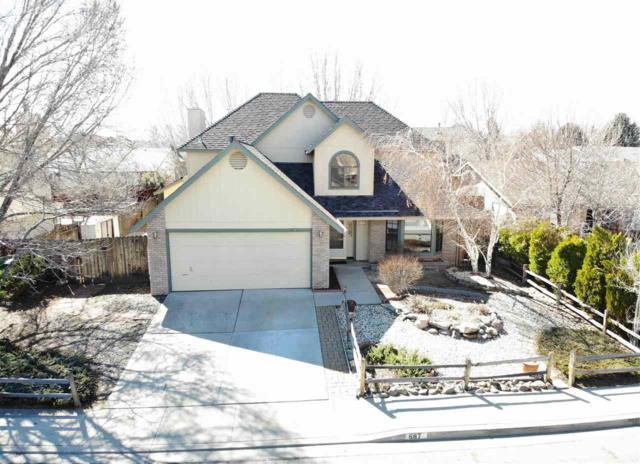 687 Lucas Drive, Carson City, NV 89701 (MLS #190003553) :: NVGemme Real Estate