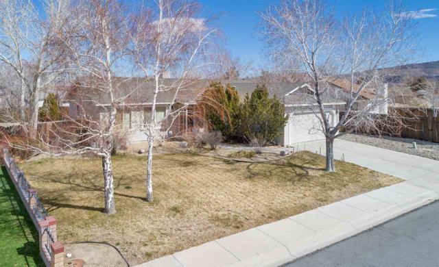 408 Channel Dr, Dayton, NV 89403 (MLS #190003555) :: NVGemme Real Estate