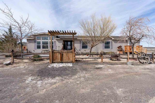17427 Bango Road, Fernley, NV 89408 (MLS #190003571) :: NVGemme Real Estate