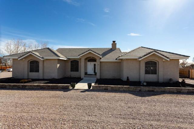 177 Carson River Dr, Fallon, NV 89406 (MLS #190003616) :: Theresa Nelson Real Estate