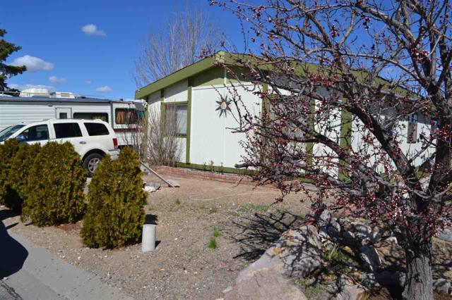 230 Miriam Way, Moundhouse, NV 89706 (MLS #190003953) :: Joshua Fink Group