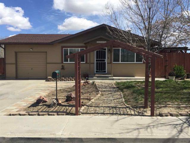 1001 Gary Lane, Fallon, NV 89406 (MLS #190003961) :: Theresa Nelson Real Estate