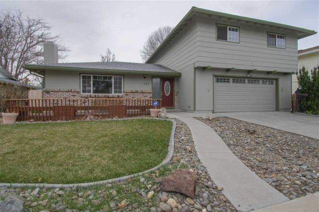 1505 E Telegraph, Carson City, NV 89701 (MLS #190004140) :: Joshua Fink Group