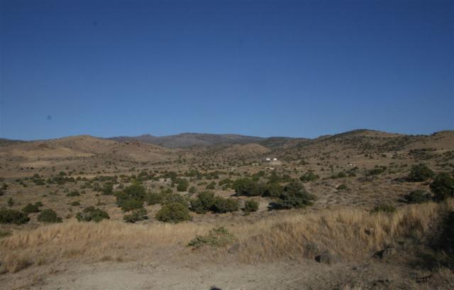 355 Hidden Canyon, Reno, NV 89510 (MLS #190004218) :: Harcourts NV1
