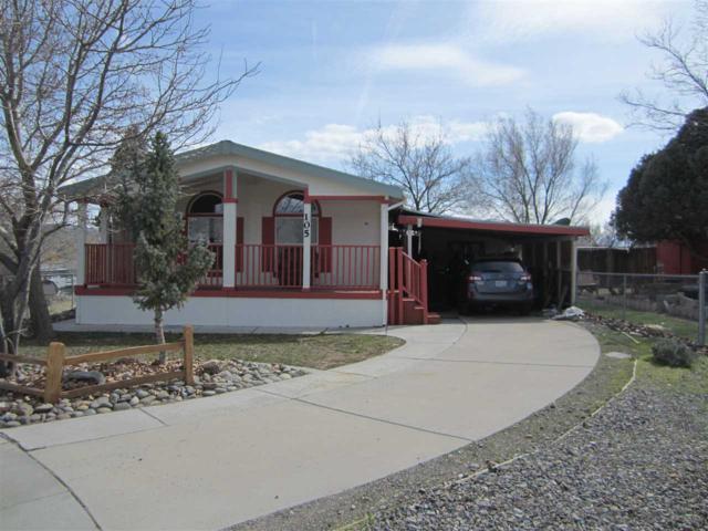 105 Quartz Way, Moundhouse, NV 89706 (MLS #190004247) :: Joshua Fink Group