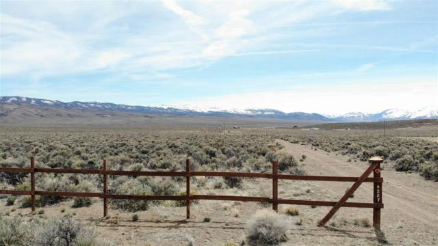 4287 Hwy 208, Topaz, NV 89444 (MLS #190004263) :: Theresa Nelson Real Estate
