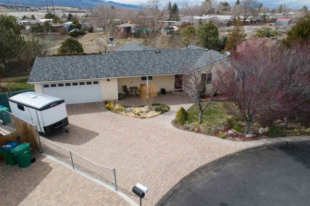 16020 Tourmaline Dr, Reno, NV 89521 (MLS #190004351) :: Joshua Fink Group