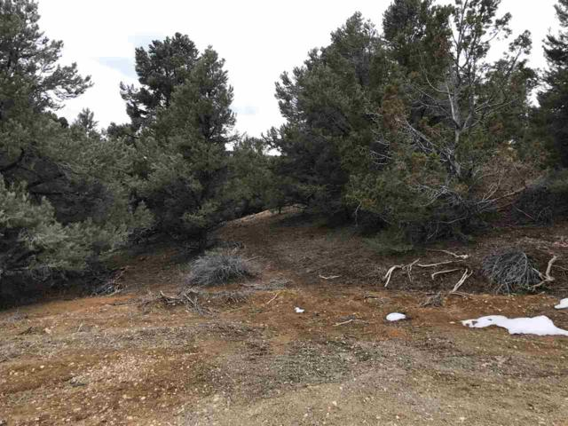 21881&99 Bowie Rd, Reno, NV 89521 (MLS #190004422) :: Joshua Fink Group