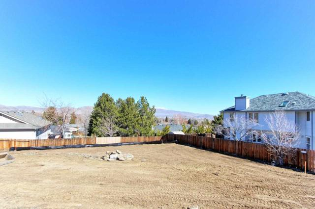 1191 Liberty Ct, Carson City, NV 89703 (MLS #190004473) :: Theresa Nelson Real Estate
