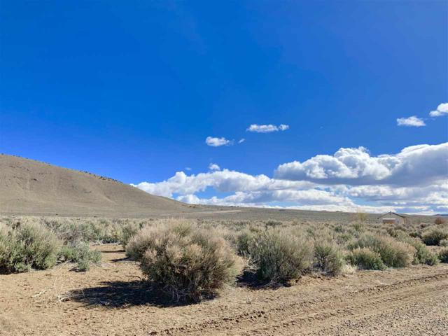 4276 Bosler Way, Wellington, NV 89444 (MLS #190004567) :: The Hertz Team