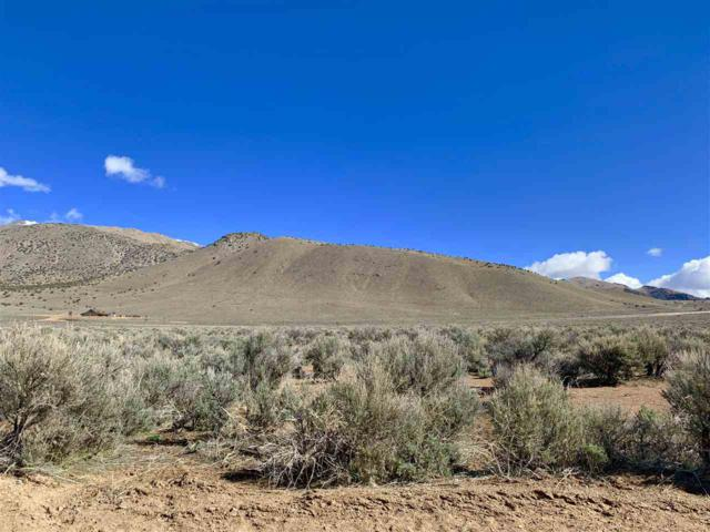 4290 Bosler Way, Wellington, NV 89444 (MLS #190004568) :: NVGemme Real Estate