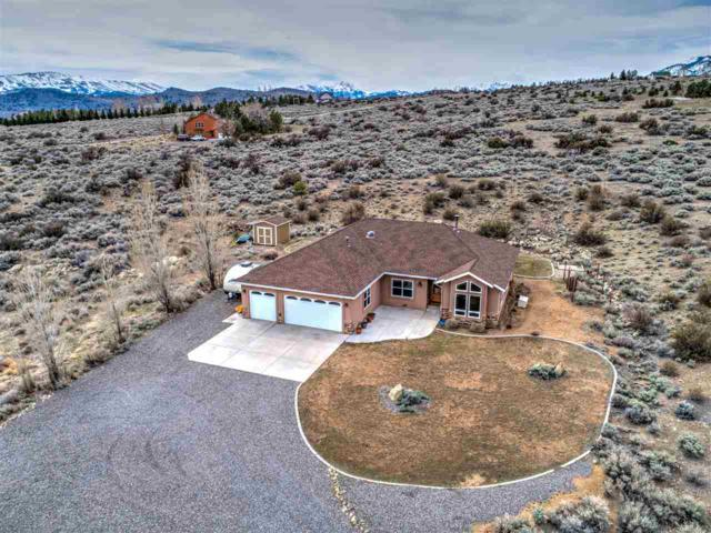 230 Hawkins Peak, Woodfords, Ca, CA 96120 (MLS #190004576) :: Joshua Fink Group