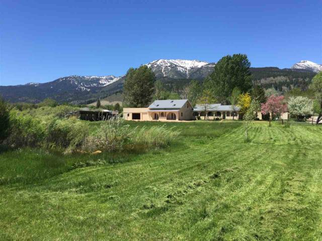 40 Middlefield Place, Washoe Valley, NV 89704 (MLS #190004742) :: Vaulet Group Real Estate