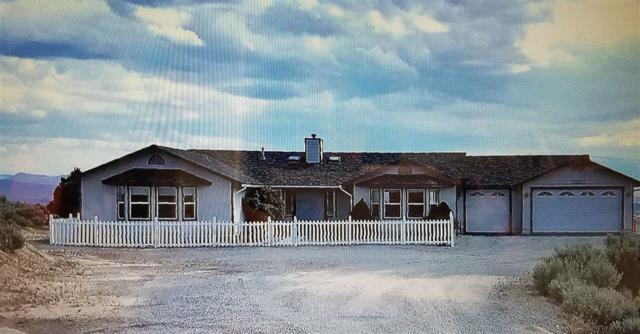 745 Linterna Lane, Sparks, NV 89441 (MLS #190004780) :: NVGemme Real Estate