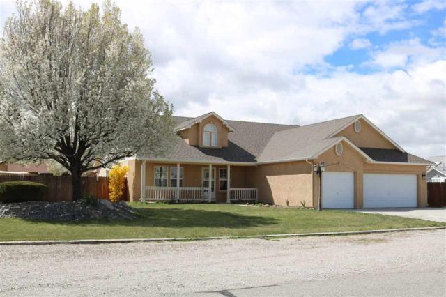 1375 Bobby Way, Fallon, NV 89406 (MLS #190004802) :: Vaulet Group Real Estate