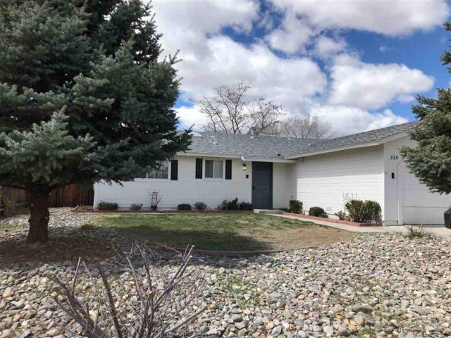 339 Occidental Drive, Dayton, NV 89403 (MLS #190004843) :: Joshua Fink Group