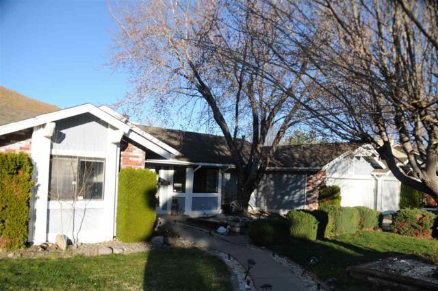 285 Gooseberry Drive, Reno, NV 89523 (MLS #190004901) :: Theresa Nelson Real Estate