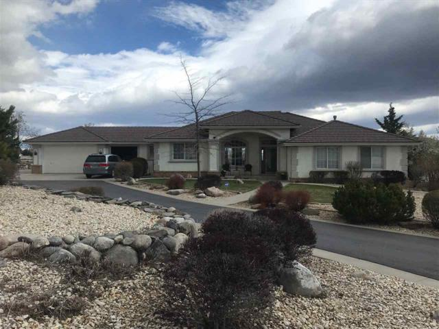 735 Flanders Rd, Reno, NV 89511 (MLS #190004964) :: Theresa Nelson Real Estate