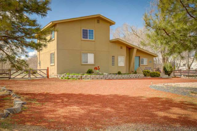 1521 Downs Drive, Minden, NV 89423 (MLS #190004983) :: Chase International Real Estate