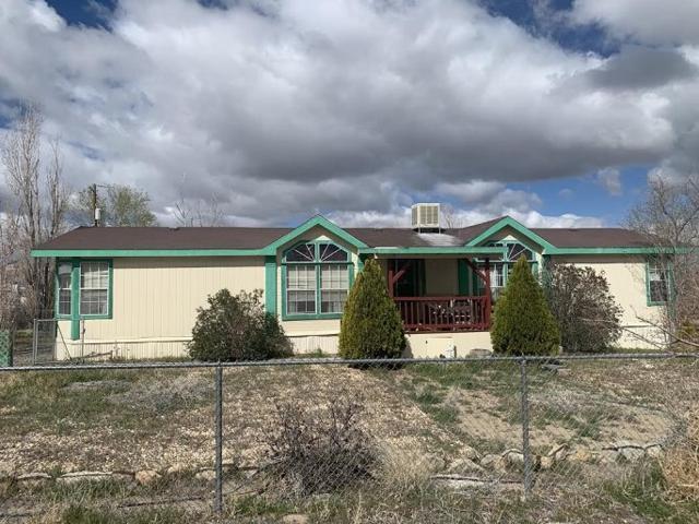 25 Buffalo Ln, Yerington, NV 89447 (MLS #190005027) :: Theresa Nelson Real Estate