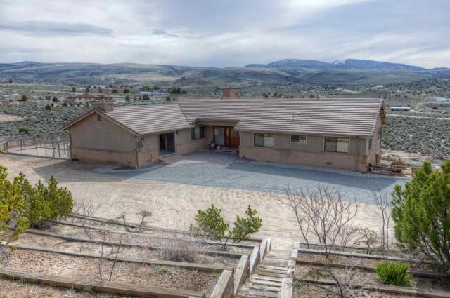 550 Calle De La Plata, Sparks, NV 89441 (MLS #190005079) :: NVGemme Real Estate