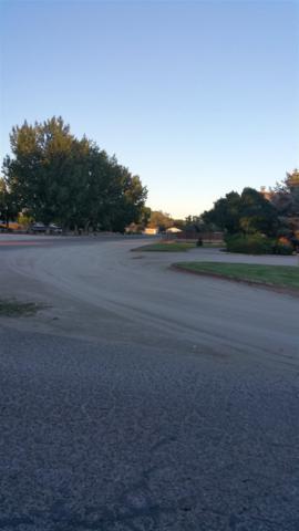 774 Copperwood, Fallon, NV 89406 (MLS #190005102) :: NVGemme Real Estate
