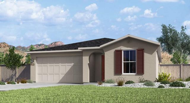 7377 Continuum Drive, Reno, NV 89506 (MLS #190005106) :: Theresa Nelson Real Estate