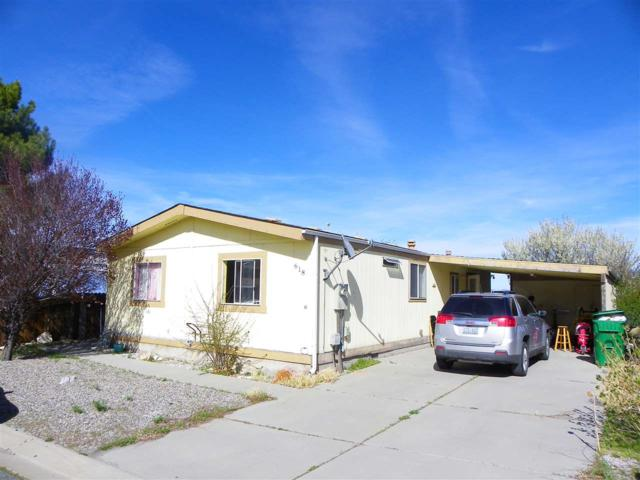 618 Jenni Ln, Moundhouse, NV 89706 (MLS #190005109) :: Joshua Fink Group