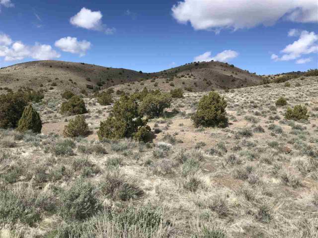 0 Carerra Dr, Reno, NV 89510 (MLS #190005136) :: Theresa Nelson Real Estate