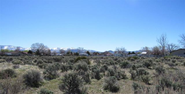 961 Dresslerville Road, Gardnerville, NV 89460 (MLS #190005146) :: Ferrari-Lund Real Estate