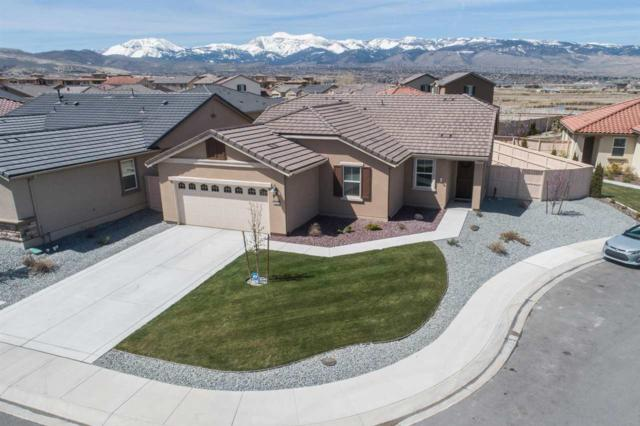10515 Foxberry Park Ct, Reno, NV 89521 (MLS #190005158) :: Theresa Nelson Real Estate