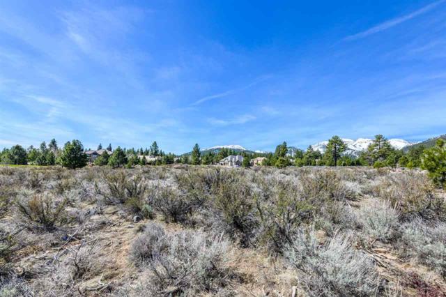 16960 Salut Ct, Reno, NV 89511 (MLS #190005314) :: Vaulet Group Real Estate