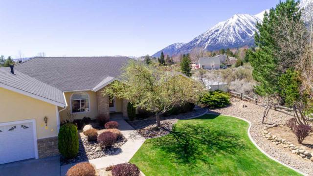 237 Peach Ct, Gardnerville, NV 89410 (MLS #190005334) :: Chase International Real Estate