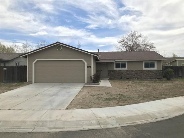 405 Bramble Ct, Fernley, NV 89408 (MLS #190005353) :: Joshua Fink Group