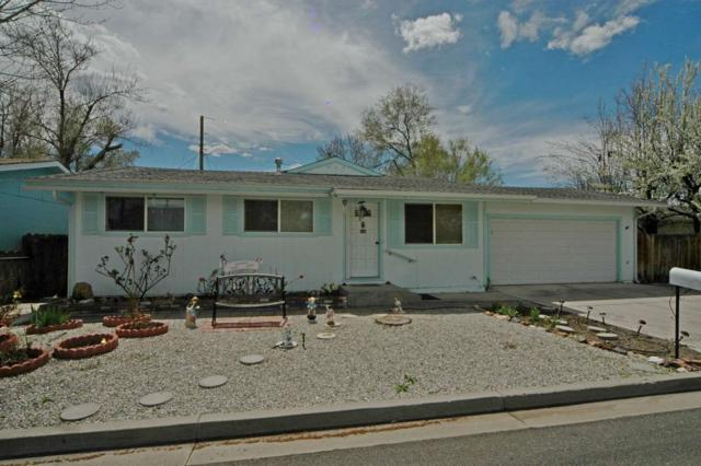 1357 Toler Lane, Gardnerville, NV 89410 (MLS #190005363) :: Chase International Real Estate
